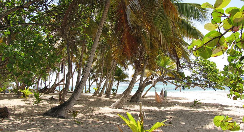 Marie-Galante, i Caraibi rurali con 15 spiagge da sogno