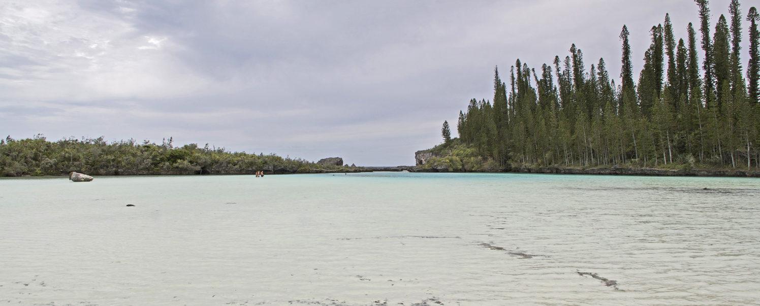 Isola dei Pini, Nuova Caledonia: la piscina naturale di Oro
